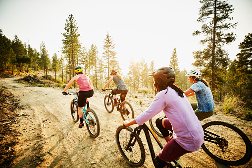 Female mountain bikers riding on forest road on summer evening - gettyimageskorea