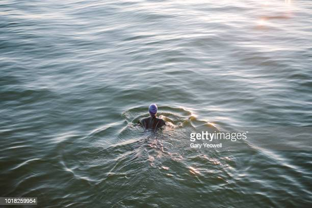 female open water swimmer in the sea - wetsuit stock pictures, royalty-free photos & images