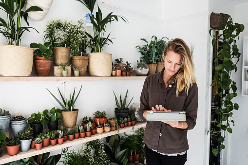 Female owner of plant shop standing next to a selection of plants on wooden shelves, holding digital tablet. - gettyimageskorea