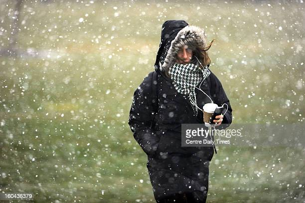 A female Penn State student fights the wind and snow as she walks along Bigler Road on the Penn State campus Thursday January 31 in State College...