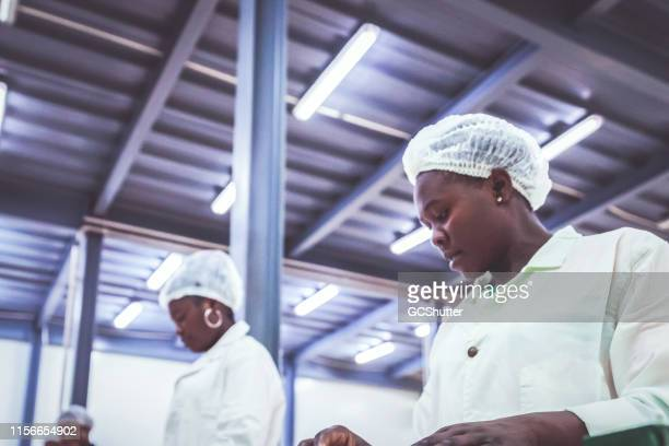 Female Production Line Workers Checking the Products at a Factory in Africa