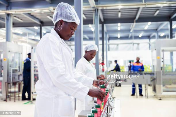 female production line workers working at a factory in africa - food and drink industry stock pictures, royalty-free photos & images
