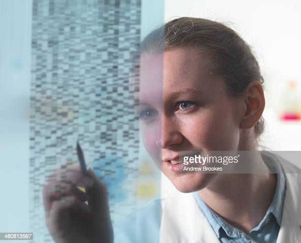 Female researcher examining DNA autoradiogram gel in laboratory