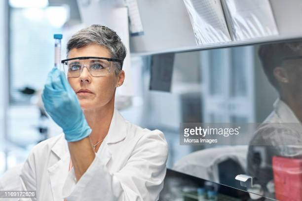 female researcher examining medical sample in lab - 微生物学 ストックフォトと画像