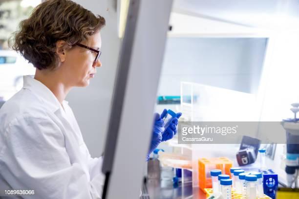 kvinnliga forskare förbereder sig för att arbeta i en biologisk säkerhet skåp - vangen bildbanksfoton och bilder