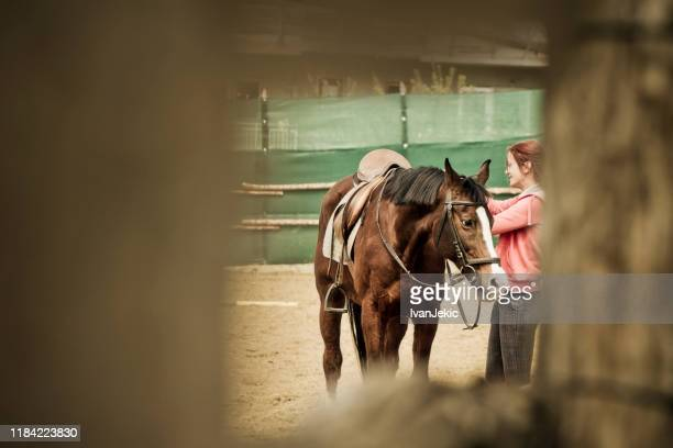 female rider grooming her horse - ivanjekic stock pictures, royalty-free photos & images