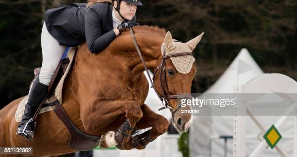 female rider jumping an obstacle on chestnut horse - riding boot stock pictures, royalty-free photos & images