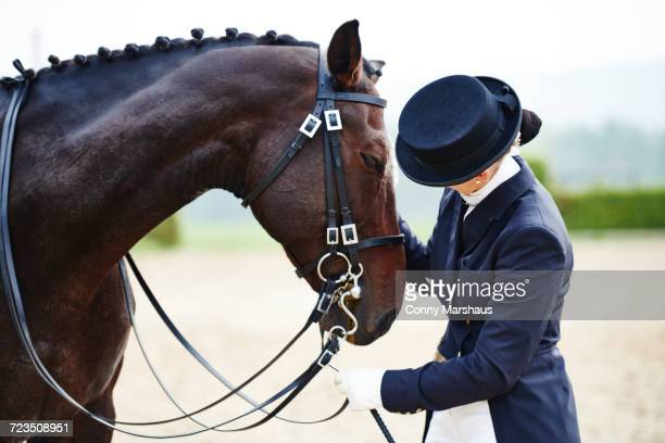 female rider petting dressage horse in equestrian arena - tail coat stock pictures, royalty-free photos & images