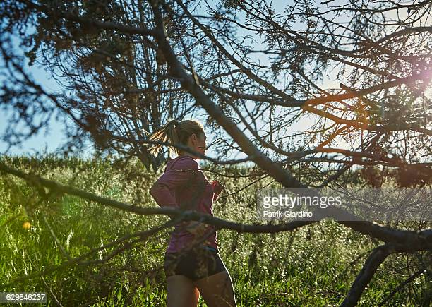 female runner - lange mouwen stockfoto's en -beelden