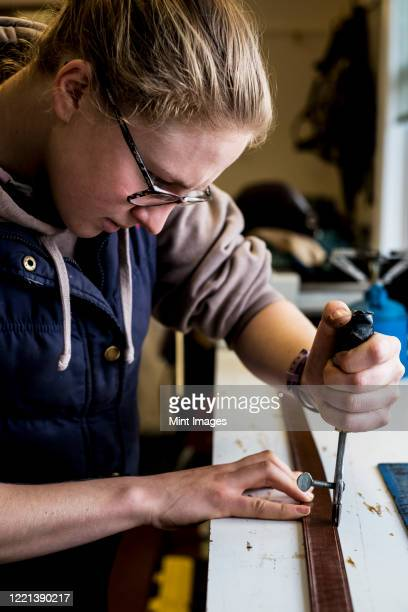 female saddler standing in workshop, using hand tool on leather strap. - strap stock pictures, royalty-free photos & images