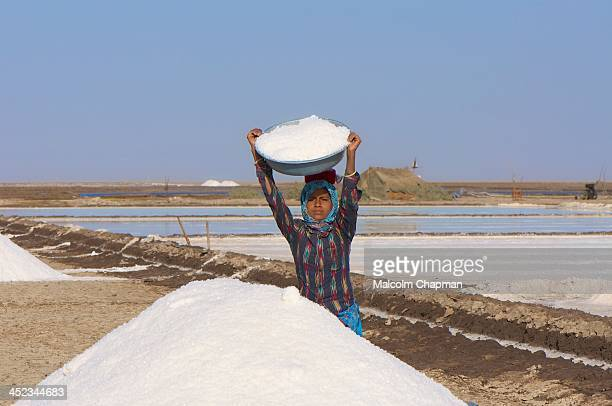 Female salt worker gathers salt ready for collection in the Little Rann of Kutch. The area is famous for its unique salt-pans where salt is harvested...