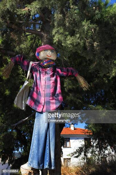 female scarecrow in front of a cypress tree in barbaros village,izmir. - emreturanphoto stock pictures, royalty-free photos & images