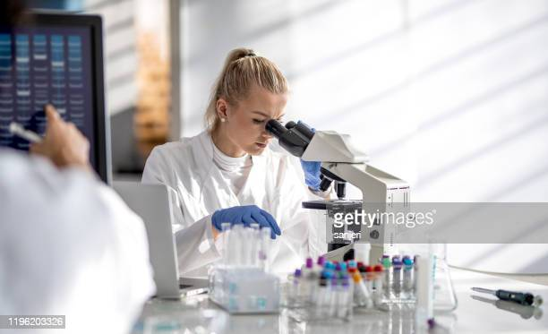 female scientist looking through a microscope - hematology stock pictures, royalty-free photos & images