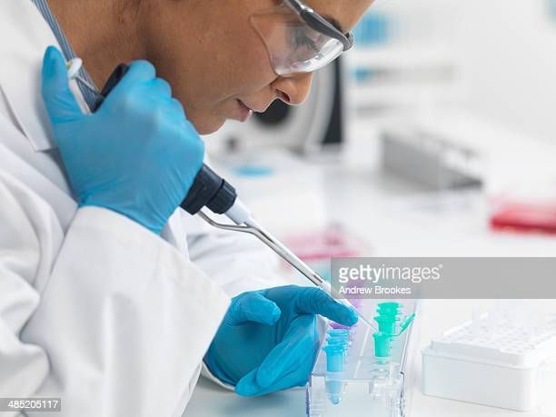Female scientist pipetting DNA samples for testing