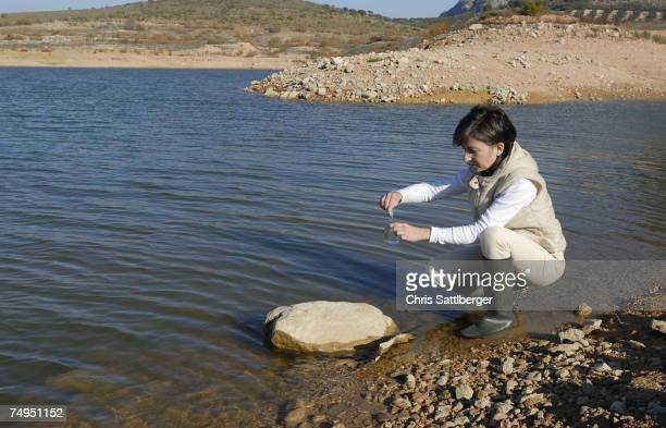 Female scientist taking water sample from lake, side view