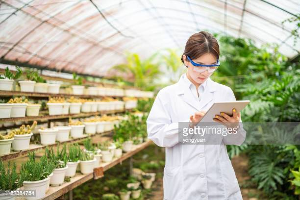 female scientist using a digital tablet in a greenhouse - biologist stock pictures, royalty-free photos & images