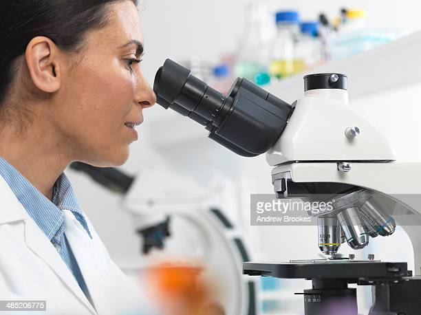 female scientist viewing sample slide for clinical test in laboratory - hematology stock photos and pictures