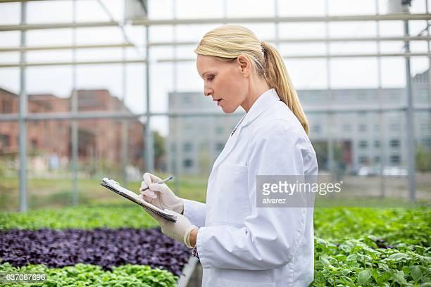 Female scientist working in greenhouse
