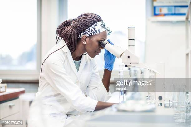 female scientist working in the laboratory, using a microscope - microscope stock pictures, royalty-free photos & images