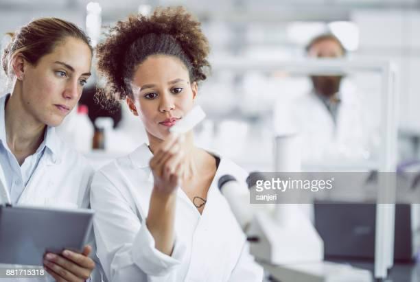 cientistas femininos olhando de microscópio - pesquisa genética - fotografias e filmes do acervo