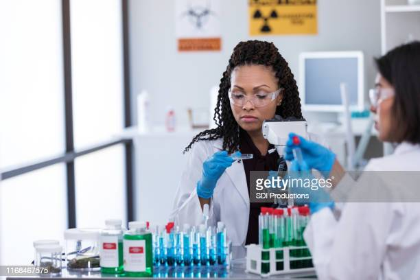 female scientists working together - microbiologist stock pictures, royalty-free photos & images