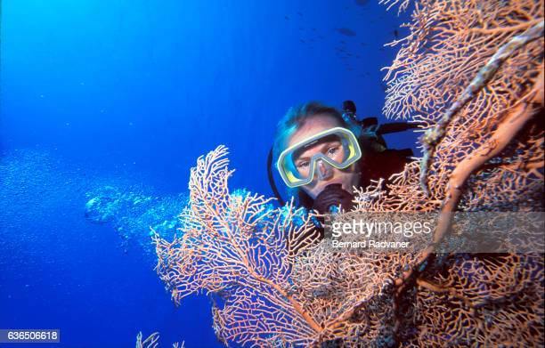 Female scuba diver behind a red gorgonian sea fan