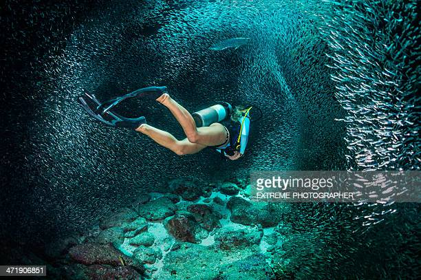 female scuba diver - diving into water stock photos and pictures
