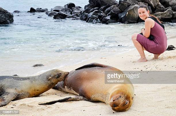 female sea lion is breastfeeding her baby - woman breastfeeding animals stock photos and pictures