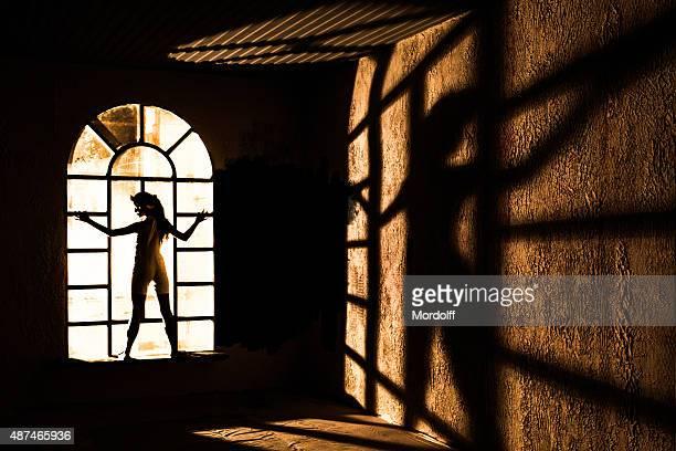 Female Silhouette in Window