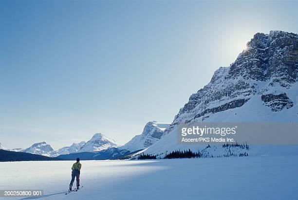 Female skier, rear view