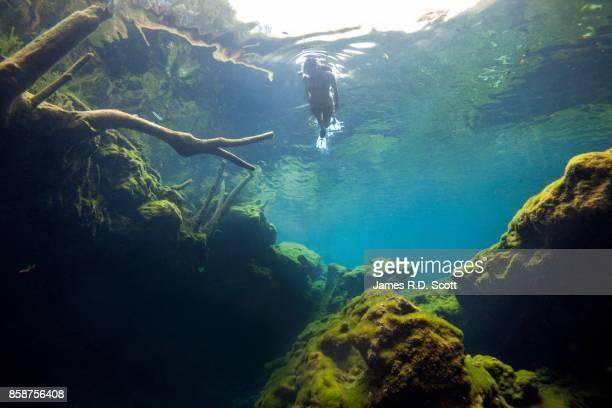Female snorkeler in cenote