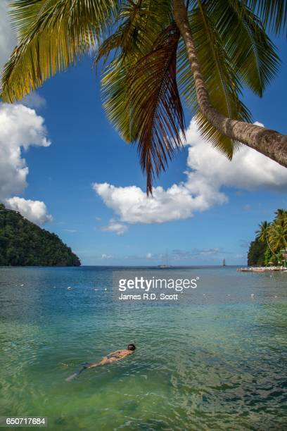 female snorkelling in marigot bay, saint lucia - st. lucia stock pictures, royalty-free photos & images