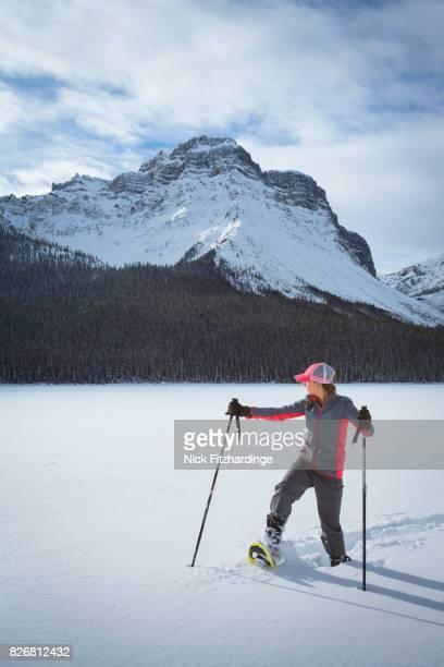 female snowshoeing at hector lake in the canadian rocky mountains, banff national park, alberta, canada - hector vivas fotografías e imágenes de stock