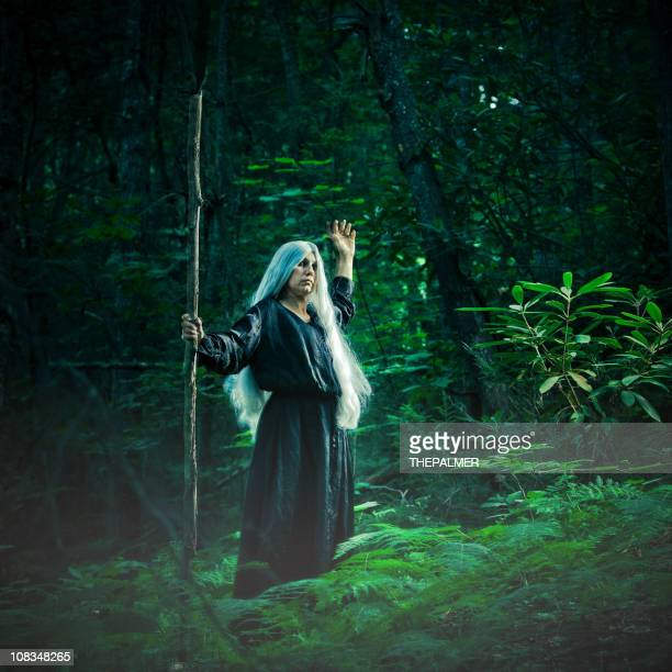 female sorcerer in the woods - wizard stock pictures, royalty-free photos & images