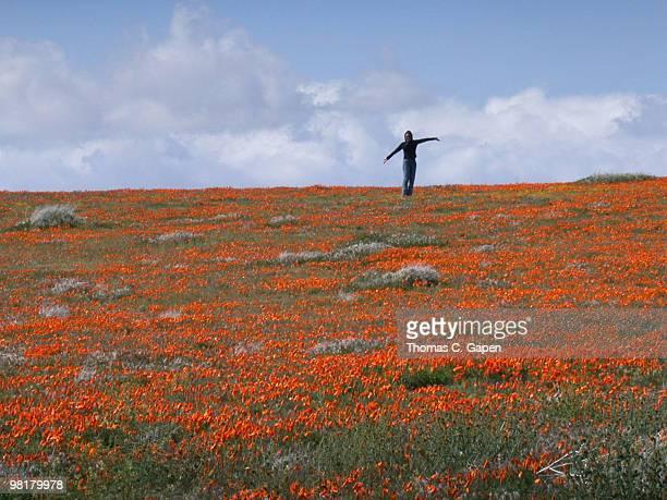 Female standing poppy field