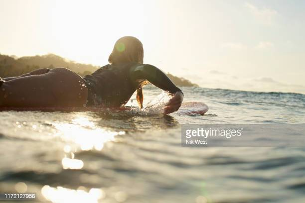 female surfer paddling out on sunny, sunset ocean - paddling stock pictures, royalty-free photos & images