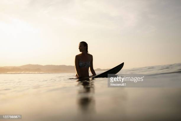 female surfer sitting on surfboard in the evening, costa rica - surf stock pictures, royalty-free photos & images