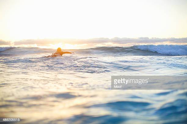Female surfer swimming out to waves on surfboard, Sydney, Australia