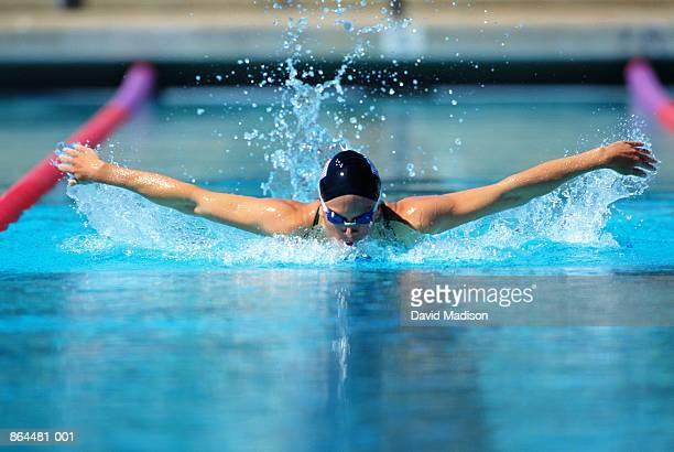 female swimmer doing butterfly stroke in pool - バタフライ ストックフォトと画像