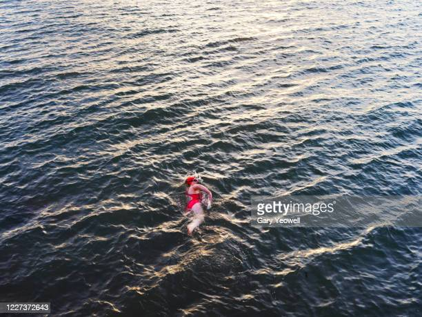 female swimmer in the sea at sunset - 水泳自由形 ストックフォトと画像