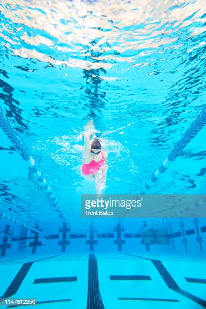 female swimming in pool - freestyle swimming stock pictures, royalty-free photos & images