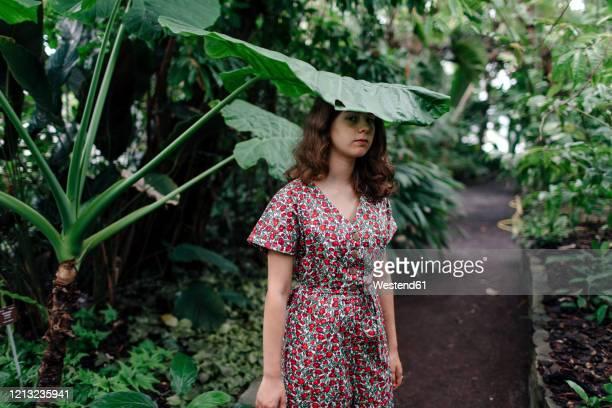 female teenager under palm tree in botanical garden - botanischer garten stock-fotos und bilder