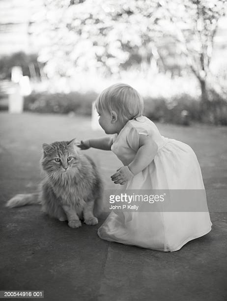 female toddler (12-15 months) petting long-haired cat (b&w) - hairy p stock pictures, royalty-free photos & images