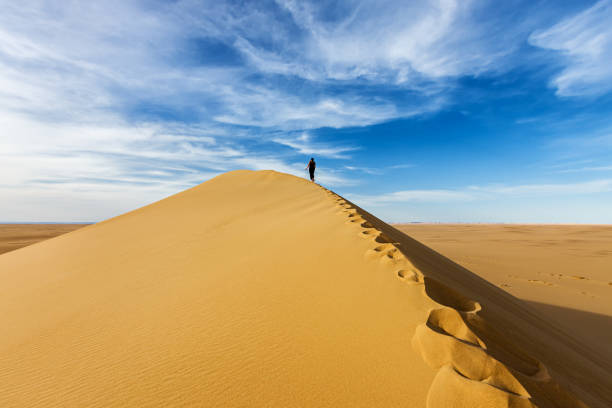 Female Tourist Standing On The Top Of Sandune, Sahara Desert Wall Art