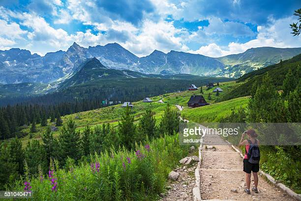 female tourist taking picture in mountains - poland stock pictures, royalty-free photos & images