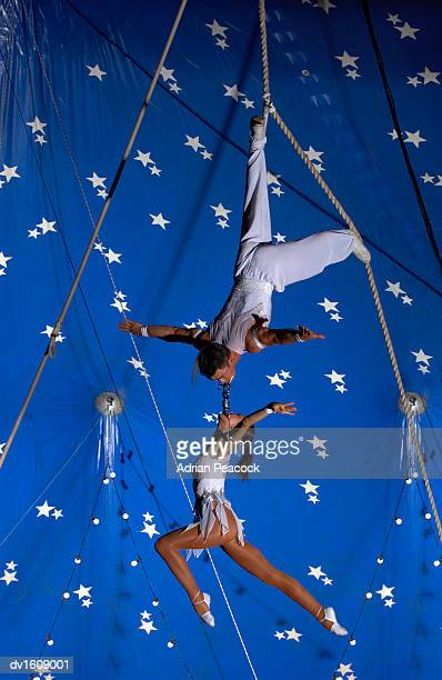 Female Trapeze Artist Hangs From a Male Trapeze Artist High Up in a Circus Tent, Connected to Him at the Mouth