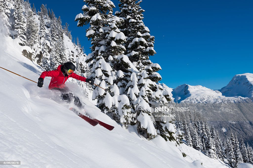 Female tree skiing fresh powder : Stock Photo