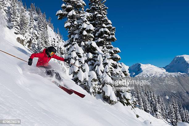 Female tree skiing fresh powder