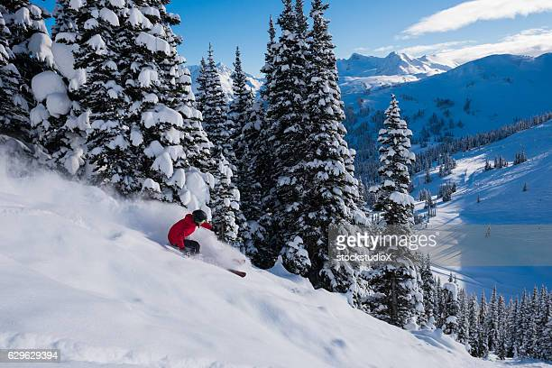 Female tree skiing fresh powder