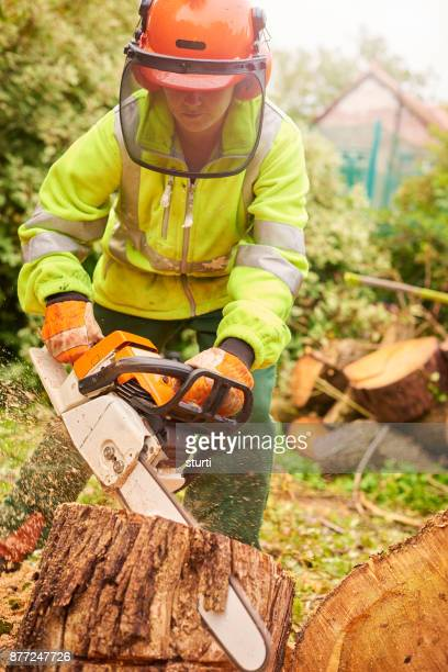 female tree surgeon cutting a stump - sturti stock pictures, royalty-free photos & images